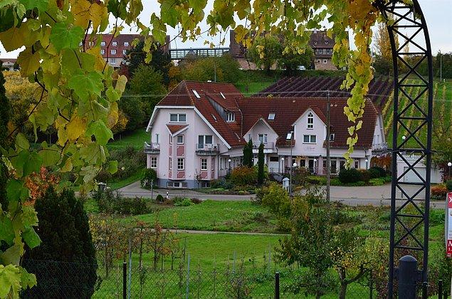 Herbstzeit in Leinsweiler
