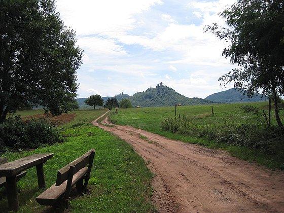 Annweiler Dreissig