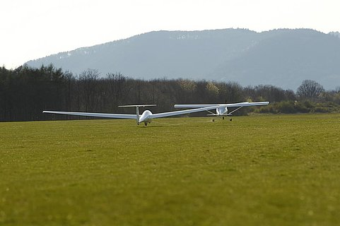 Aero Club Landau Pfalz e.V.