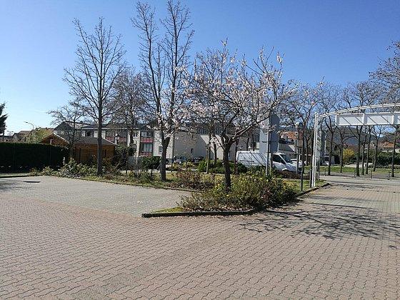 Am Frantzplatz