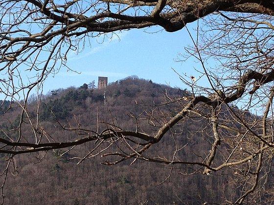 Blick auf Burgruine Ramburg